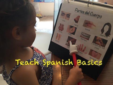 Spanish Learning Folder: Teach All Spanish Basics