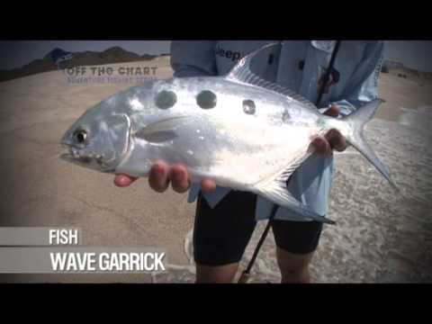 Wave Garrick: Spinning from the Shore: Oman