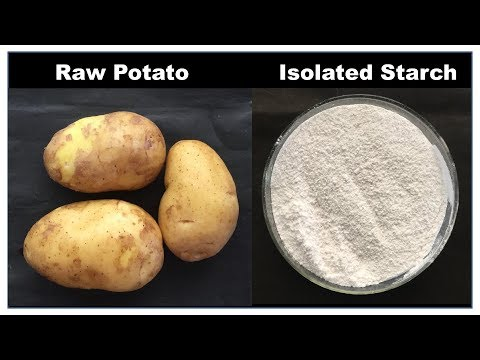 Isolation of starch from potato (हिंदी)