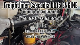 Freightliner Cascadia DD13 DD15 ENGINE injectors cups replacement
