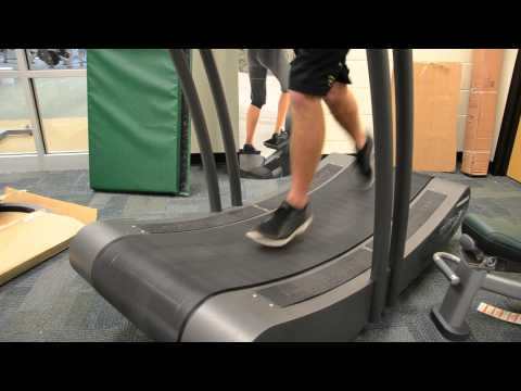 The new equipment at the USF Campus Recreation Center