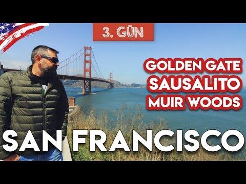 Golden Gate Köprüsü, Sausalito ve Muir Woods