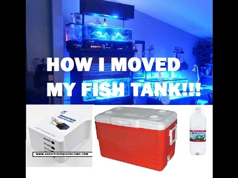 HOW I MOVED MY FISH TANK WITH JEBAO BATTERY BACKUP, WATER BOTTLES AND COOLERS!!