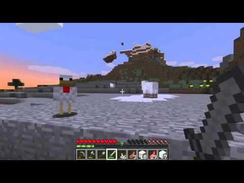 How to get eggs from chicken - Minecraft