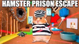 Hamster BOX FORT Prison ESCAPE ROOM! 🐹🚨