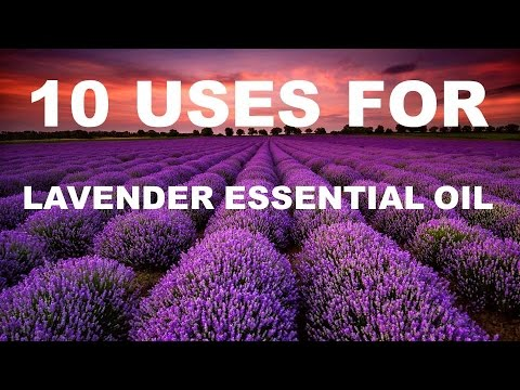 10 Benefits and Uses of Lavender Essential Oil