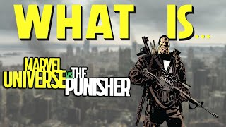 What Is... Marvel Universe Vs. The Punisher