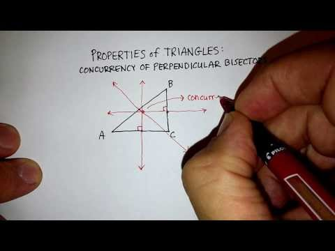 Triangles: Circumcenter (2)
