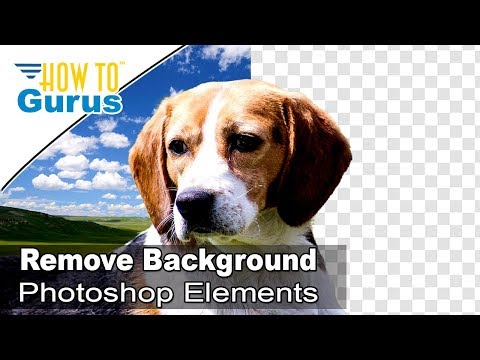 Photoshop Elements How to Remove Change Background Tutorial : in 2018 15 14 13