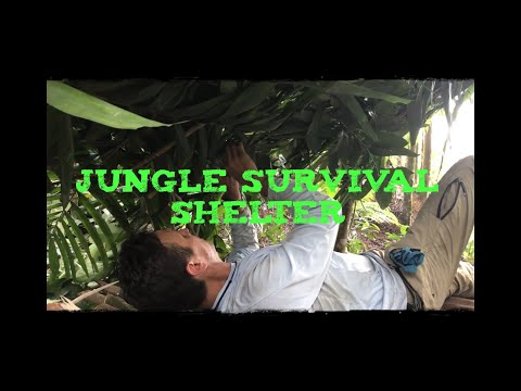 Jungle Survival Shelter