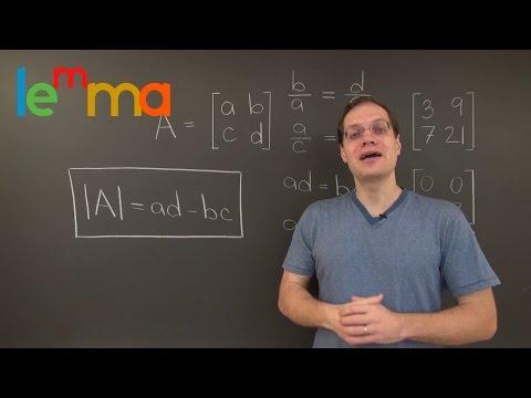 Linear Algebra 14TBD: Derivation of the 2x2 Determinant