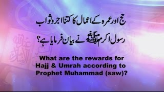 What are the rewards for Hajj & Umrah according to Prophet Muhammad (saw)?