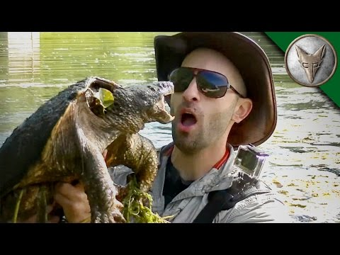 Epic Turtle Catch from a Kayak!