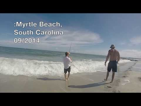 Myrtle Beach Shark Fishing