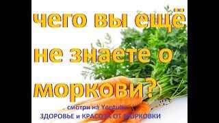 чего вы ещё не знаете о моркови