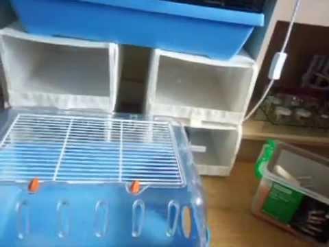 My New Hamster Bin Cage.