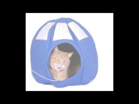Cat In The Tardis