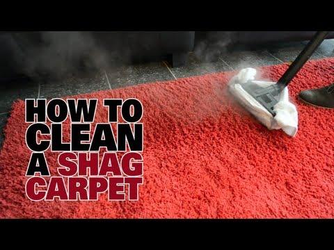 How to Steam Clean a Shag Carpet  - Dupray