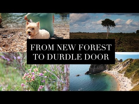 Travel Diary   English South Coast   New Forest, Lulworth Cove, Durdle Door   Szilvia Bodi