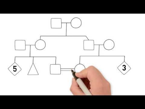 How to Draw a Family Tree - Part 1 Introduction