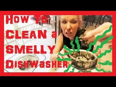 HOW TO FIX & CLEAN a SMELLY Dishwasher! Could Be Making Your Family SICK!
