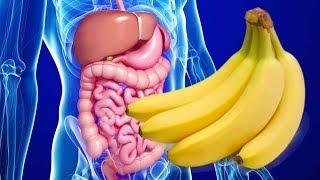 #x202b;هل تعلم ماذا يحدث لجسمك عند أكل الموز على الريق.. سبحان الله !#x202c;lrm;