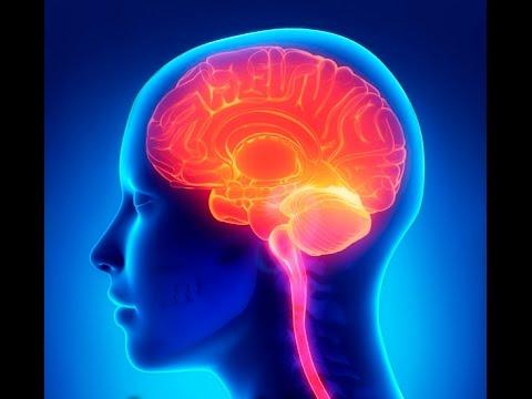 GENIUS INTELLIGENCE: Secret Methods to Increase IQ