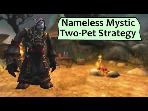 Nameless Mystic 2 Pet Strategy Guide