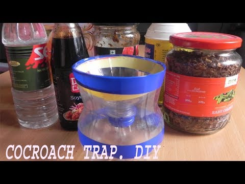 Cockroach catcher how to make