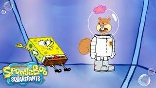 SpongeBob SquarePants | Sandy