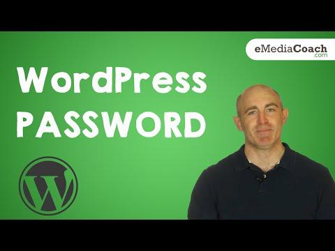 Changing your WordPress Login Password