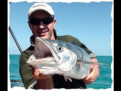 Livebait fishing Rig for Spanish Mackerel, great fishing tips!!