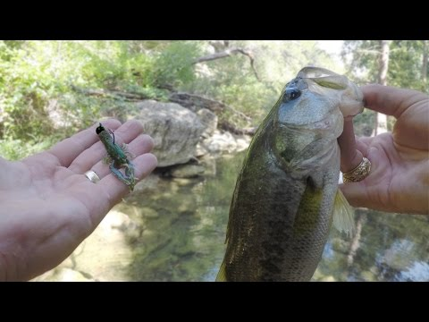 Fishing for Bass and Sunfish in Clear Texas Creeks with Crawfish