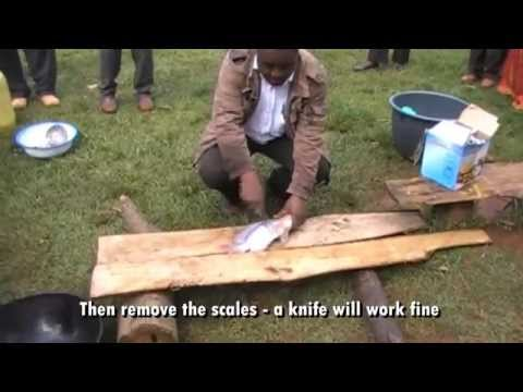 HOW TO PREPARE AND DEEP-FRY FRESH FISH