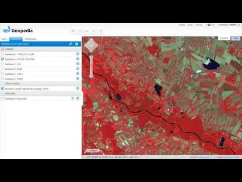 Satellite imagery archive within GIS in the Cloud