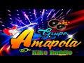 GRUPO AMAPOLA - COPAS DE AMOR - PRIMICIA 2019