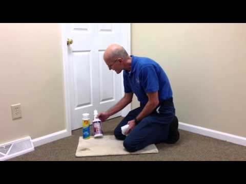 How to Remove Tar Spots