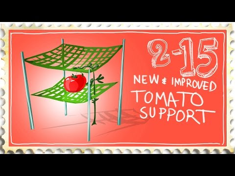 Best Tomato Support / Cage / Trellis