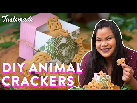 DIY Animal Crackers | Good Times With Jen