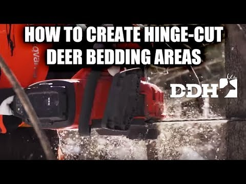 How to Create Hinge-Cut Deer Bedding Areas