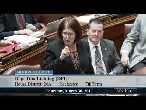 House Floor Session - part 2  3/30/17