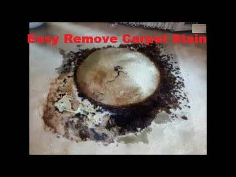 Easy remove carpet stain