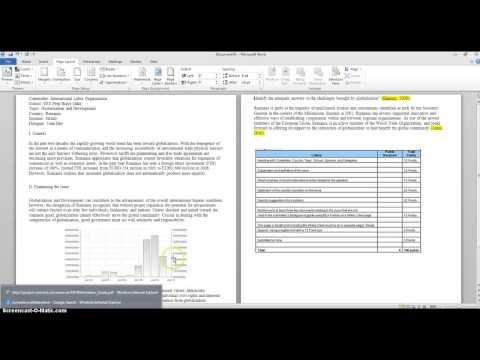 MUN Position Paper Rubric Check