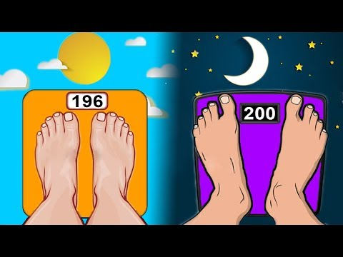 MORNING or EVENING Workouts for Weight Loss?