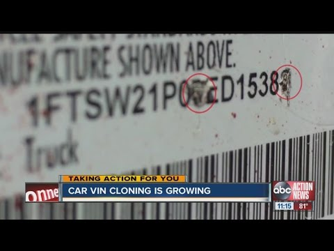 Thieves are stealing vehicles and cloning the VIN numbers costing innocent car buyers their rides