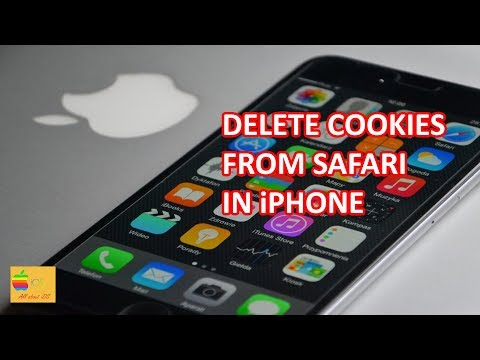 How to delete cookies in iPhone (Safari)