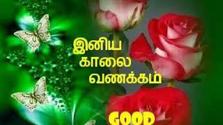 Kalai Vanakkam Music Jinni