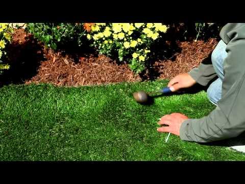 English Golden Select Artificial Grass Installation Video