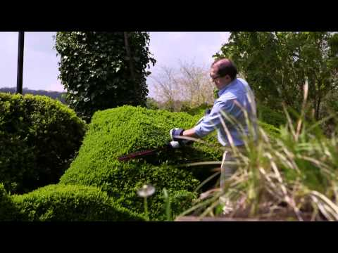 Eckman 'AngleTrim' 550W Electric Hedge Trimmer
