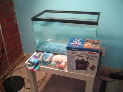 Setup a Tropical Fish Tank